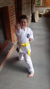 Hayden doing karate