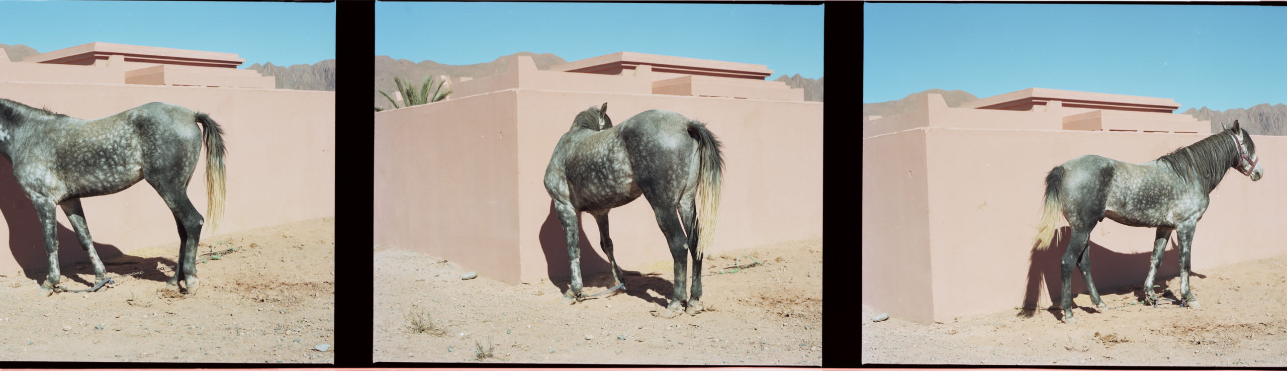 bidules-latest-prends soin de toi Victor Pattyn Maroc