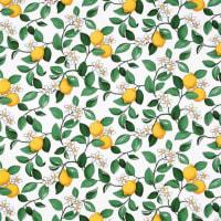 Arvidssons TextilCitronlycka fabric white-grey