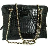 ChanelPre-Owned - Green Exotic leathers Handbag Camera