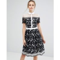 Chi Chi LondonPremium Lace Panelled Dress With Contrast Collar - Black