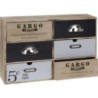 DsmKastje Cargo met 6 laatjes