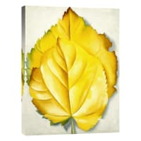 Global Gallery2 Yellow Leaves (Yellow Leaves), 1928 by Georgia OKeeffe (Giclee)