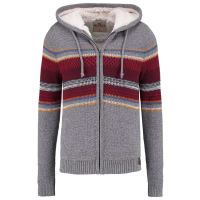 HollisterLett jakke grey