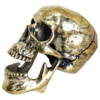 Jac Zagoory DesignsLaughing Skull Table Art