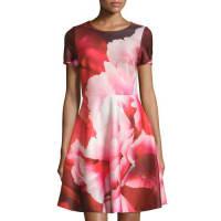 Julia JordanFloral-Print Short-Sleeve Fit & Flare Dress, Red/Multi