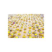 Marmont HillYellow Umbrellas (Acrylic)