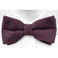 NotchPre tied bow tie - Solid purple with red, yellow & green specks