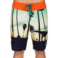PictureSacramento Boardshorts dynosore photoprint / muster