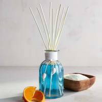 Pier 1 ImportsTurquoise Springs Reed Diffuser
