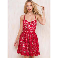 Princess PollyWomens Kiss From A Rose Lace Mini Skater Dress Nude Lining Dark Red