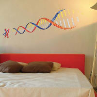 The Binary BoxEducational Dna Wall Stickers