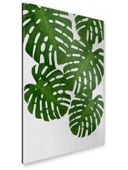 artboxONEGalerie-Print 30x20 cm Illustration Natur Stillleben Monstera Palm grün hochwertiges Acrylglas auf Alu-Dibond Bild - Wandbild Illustration Natur Stillleben Kunstdruck von Paper Pixel Print