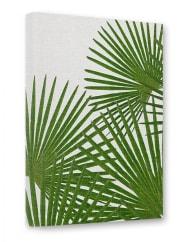 artboxONELeinwand 30x20 cm Floral Illustration Natur Stillleben Fan Palm grün Kunstdruck auf Leinwand - Wandbild Floral Illustration Natur Stillleben von Paper Pixel Print