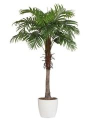 HOME AFFAIREKunstpflanze »Arecapalme«, grün, grün