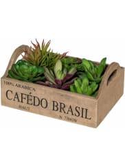 HOME AFFAIREKunstpflanze »Sukkulenten«, grün, grün