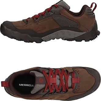 Chaussures Merrell Mens Intercept moth J73705 brun