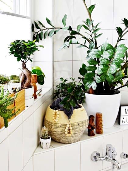 Wie dein kleines Badezimmer zur wahren Erholungsoase wird!