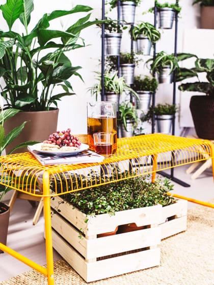 #interiorgoals! So kannst du wohnen, wie im Dschungelcamp (und ja, das willst du!)