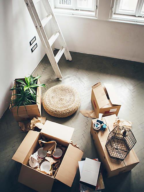 Erste Wohnung einrichten: So geht\'s! | Stylight