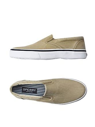 Sperry Top-sider Striper S / O Bas-tops Et Chaussures De Sport D1DtzxnQJ
