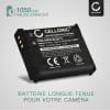 2x Batterie pour appareil photo Panasonic Lumix DMC-TZ71 -TZ70, DMC-TZ61 -TZ60, DMC-TZ58 -TZ56 -TZ55, DMC-TZ41 -TZ40, DMC-TZ37, DC-FT7,DMC-FT5, DMC-ZS60, DMC-ZS50, DMC-ZS45 -ZS40, DMC-ZS35 -ZS30 -ZS100, DMC-LZ40, DMC-TS6 -TS5 - PABCM13-1,DMW-BCM13 1050mAh Batterie Remplacement
