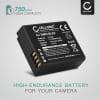 Kamera Batteri til Panasonic Lumix DMC-LX100 DMC-GX80 DMC-TZ80 -TZ81 -TZ100 -TZ101 DC-TZ90 -TZ91 DC-GX9 D-LUX 7 Typ 109 - DMW-BLE9 DMW-BLG10 BP-DC15 750mAh Udskiftsningsbatteri til kamera