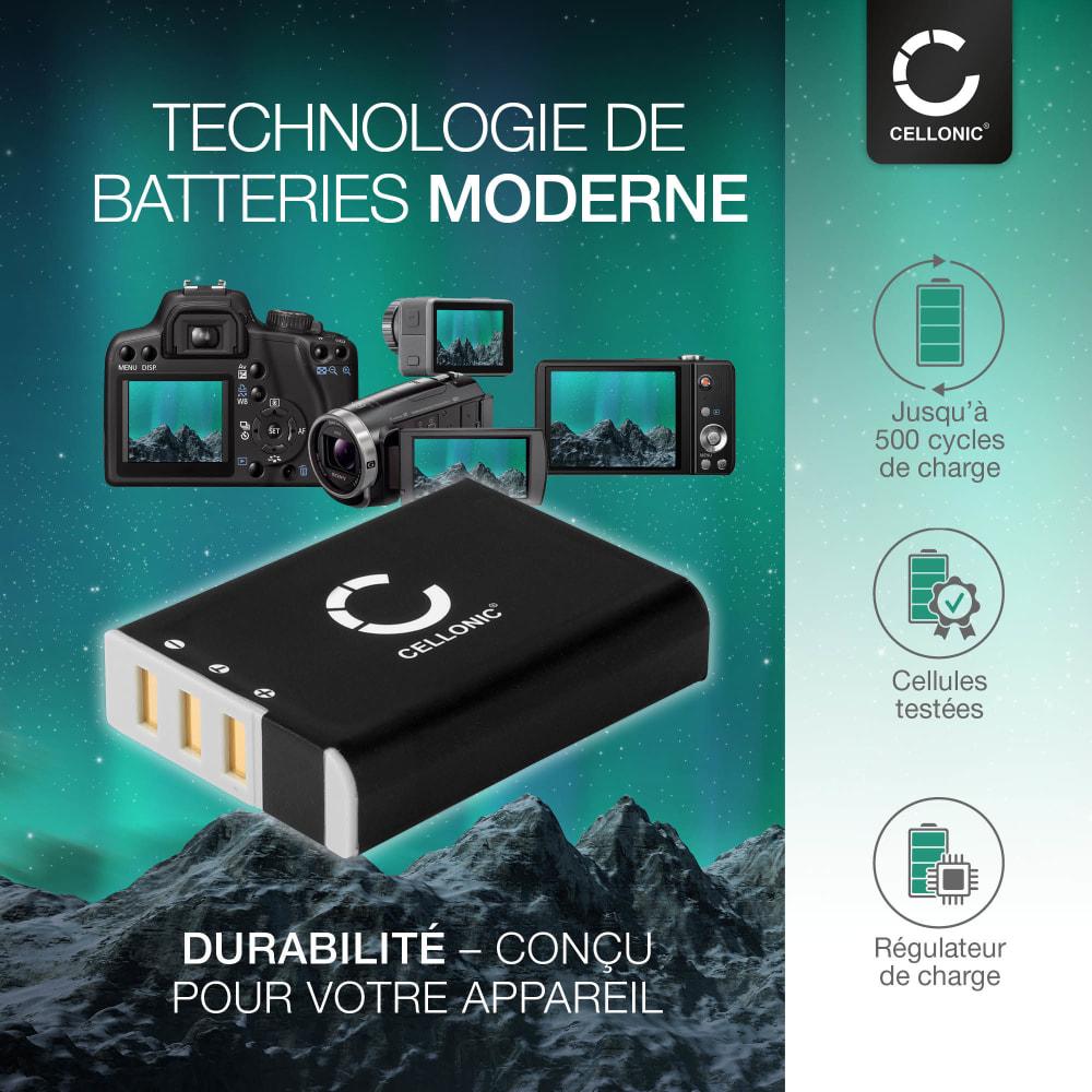 Batterie pour appareil photo Ricoh A12 28 mm F2.5 A12 50 mm F2.5 A12 Mount A16 24-85 mm F3.5-5.5 GXR P10 28-300 mm F3.5-5.6 VC S10 24-72 mm F2.5-4.4 VC - DB-90 1800mAh DB-90 Batterie Remplacement