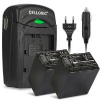 Battery for Sony AX100 FDR-AX700 PXW-Z90 HXR-NX80 HDR-CX625 -CX680 -CX900 -CX450 NEX-VG30 VG20 -VG10 - NP-FV70 NP-FV100 (2200mAh) Replacement battery
