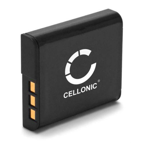 Batterie pour Sony Cyber-shot DSC-HX20V DSC-HX9V DSC-HX30V DSC-HX5V DSC-HX10V (900mAh) NP-BG1 NP-FG1