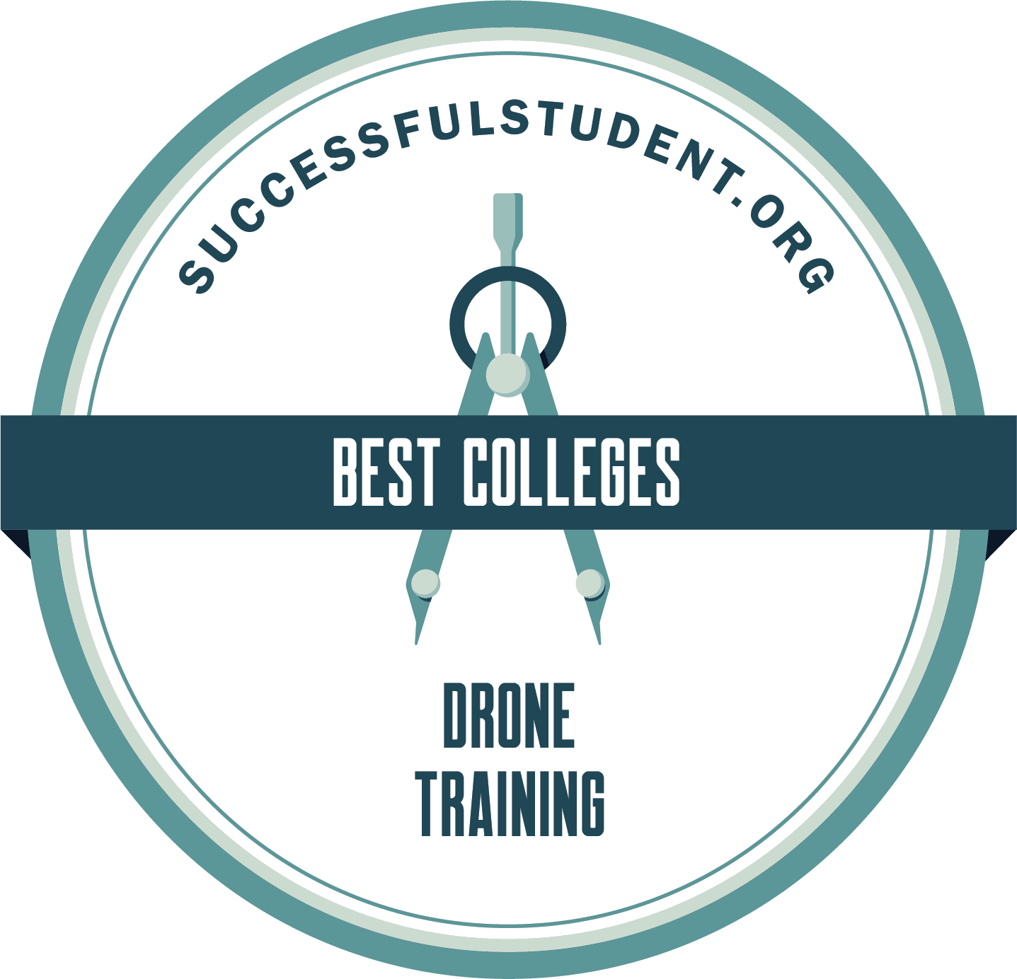 20 Best Drone Training Colleges's Badge