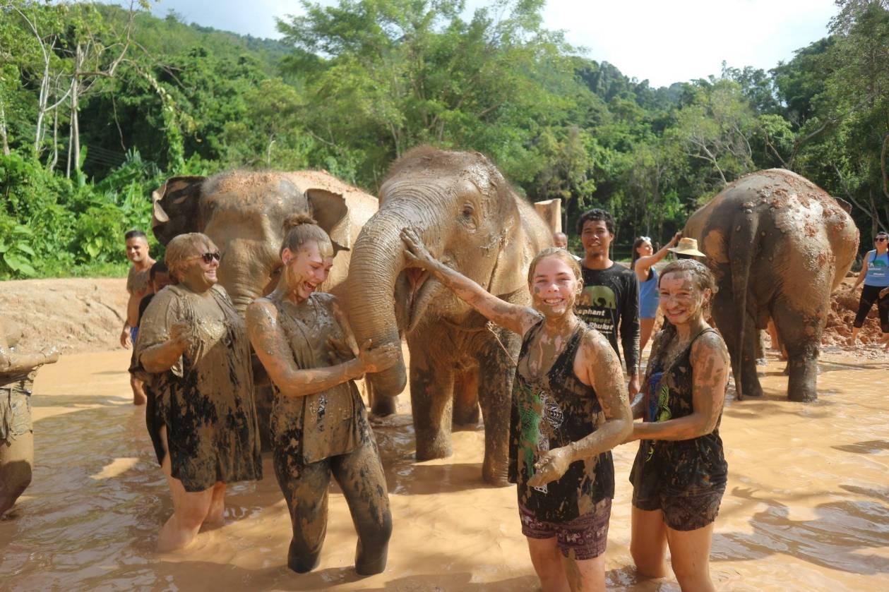Volunteer Elephant Care Training Program 3D/2N