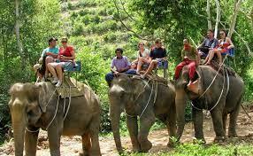 ATV 1 hour and Elephant Trekking 30 minutes