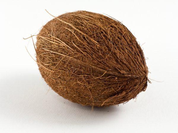 COCONUT (PER UNIT)
