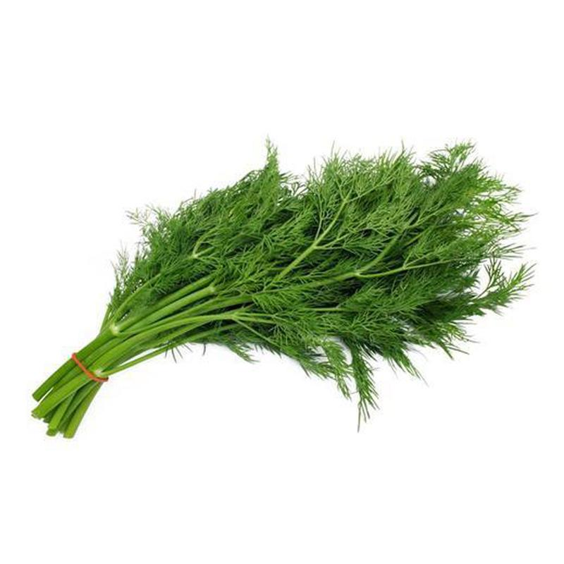 DILL LEAVES (BUNCH)