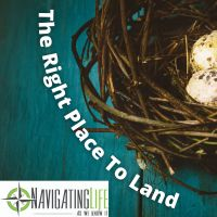 42. The Right Place To Land - Finding the Best Nest