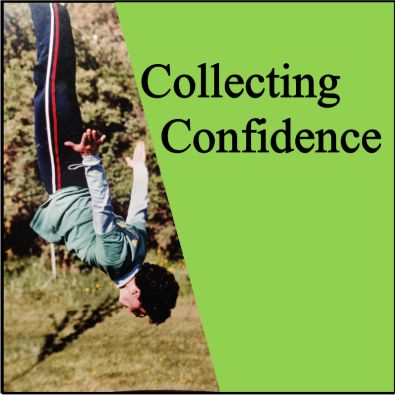 collectingconfidence.com
