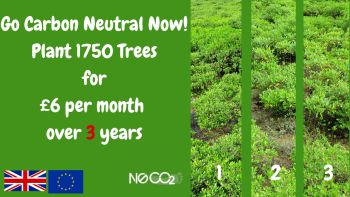 Go Carbon Neutral over 3 years