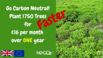 Go Carbon Neutral over 1 year