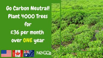 Go Carbon Neutral over 1 year: US Canada Australia