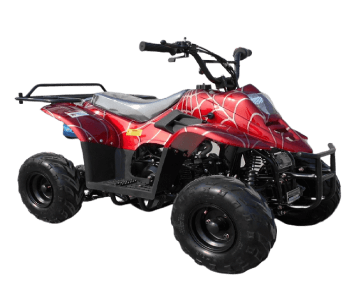 RPS 110CC RAIDER 6 KIDS AIR COOL SINGLE CYLINDER 4STROKE ATV