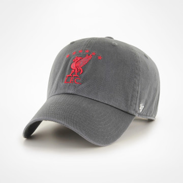Liverbird Clean Up Cap - Charcoal