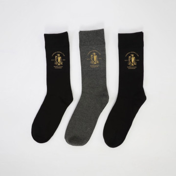 3-Pack Champions Boxed Socks