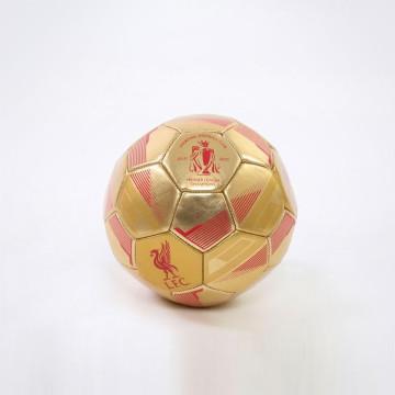 Football Champions - Size 1