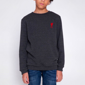 Kids Liverbird Sweatshirt - Charcoal