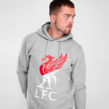 Liverbird Graphic Hoody