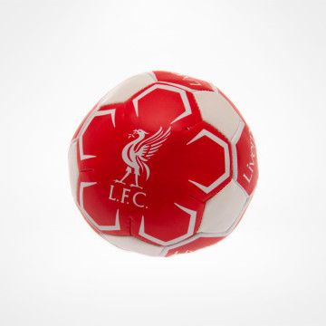 4 inch Soft Ball
