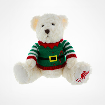 Christmas Jumper Teddy