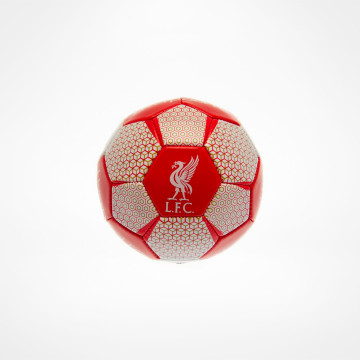 Skill Ball VT