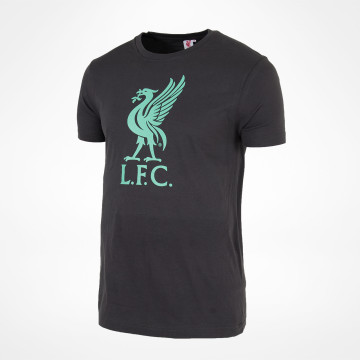 Liverbird Summer Tee - Anthracite